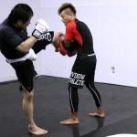 MMA(総合格闘技)